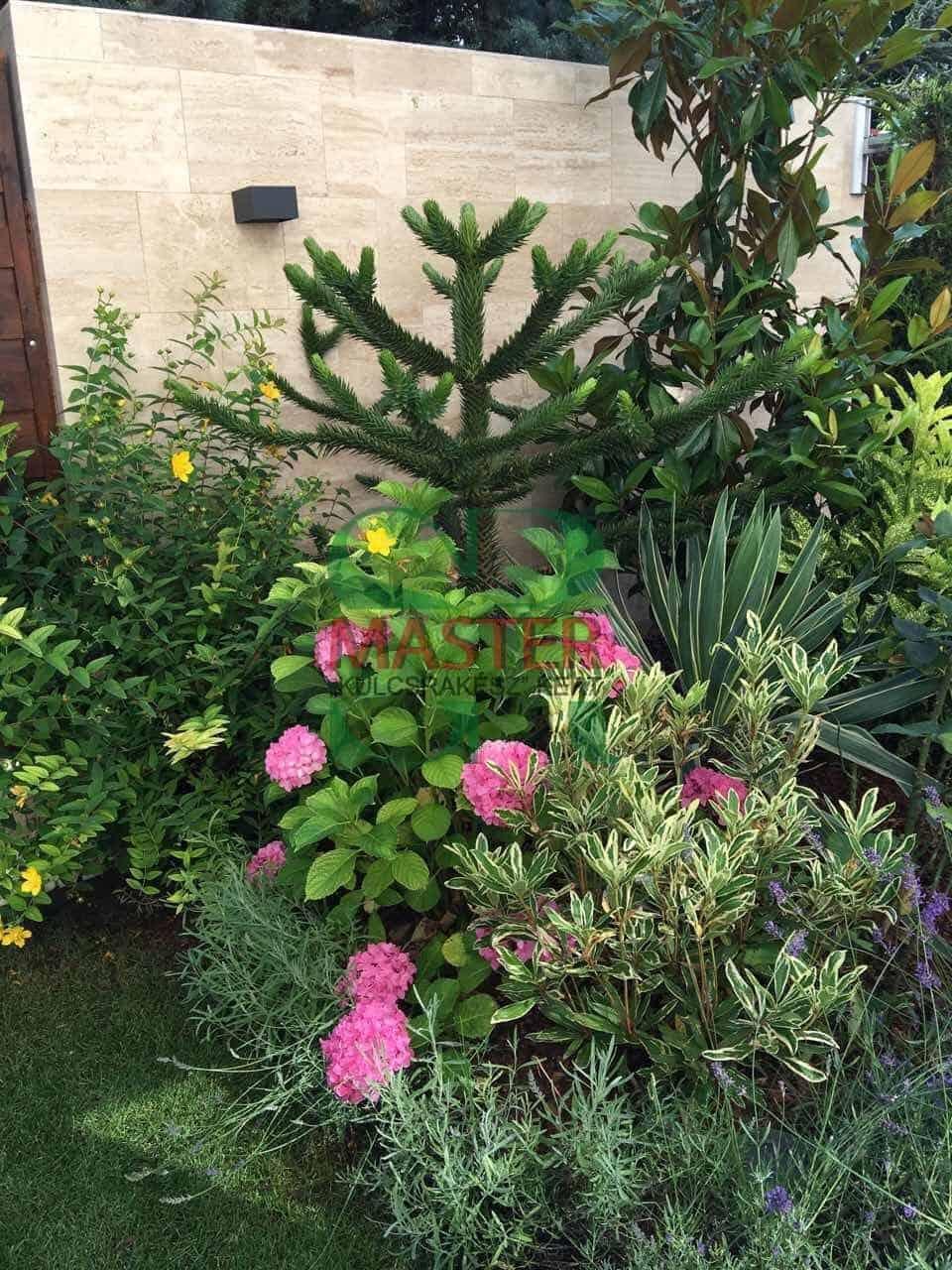 virágos kivilágított kertrész
